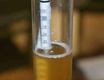 do I need a hydrometer for homebrewing?