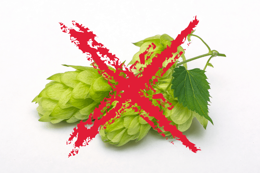 can you brew beer without hops