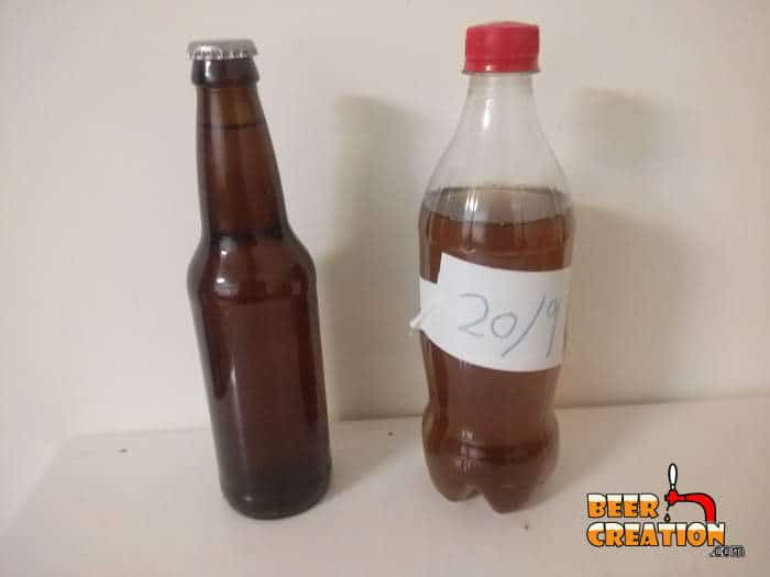 What bottles to choose for your homebrew beer? Glass or Plastic